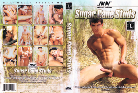 All Worlds - Sugar Cane Studs