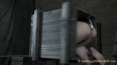 Boxed And Fucked - Elise Graves