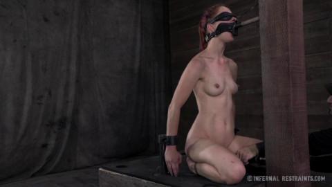 Calico Lane - For Bondage's Sake - BDSM, Humiliation, Torture