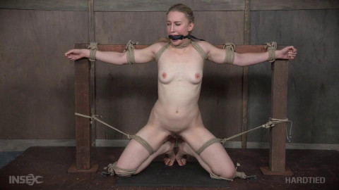 torture reyes
