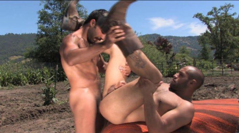 Sex world with muscle cowboys