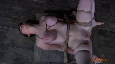 Torture For Sybil Hawthorne