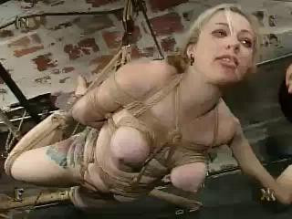 Insex - Sevens Debut (Live Feed October 20, 2002)