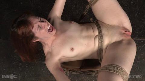 Ginger Whacks Bdsm , HD 720p