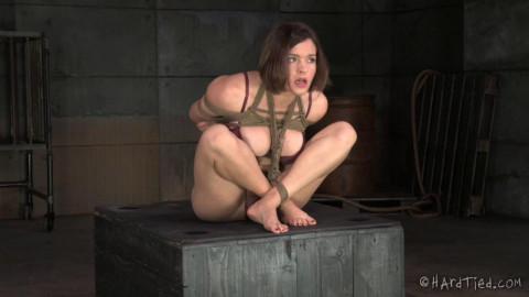 Bossy Bitch  Krissy Lynn  Jack Hammer