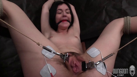 Tiny Submissive