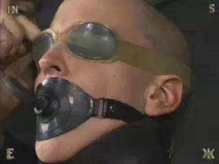 Insex - Bald