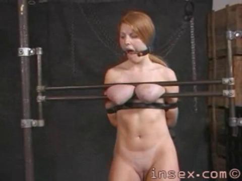 Insex - Peaches Training