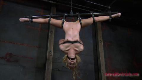 InfernalRestraints - Virgin Territory - Nicki Blue, PD