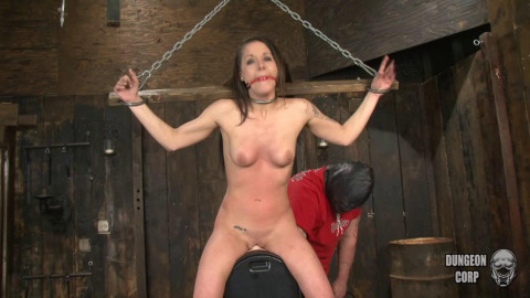 Whipped on the Sybian