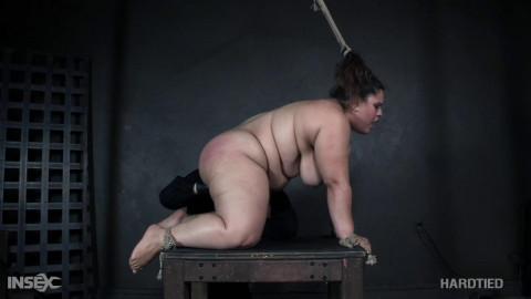 Tight tying for curvy sex pistol Karla Lane