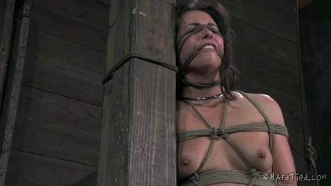 Hardtied - Ball gagged, Nose pinned, flogged, and spanked