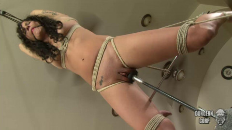 Sadie Dawson - Suspended and Fucked