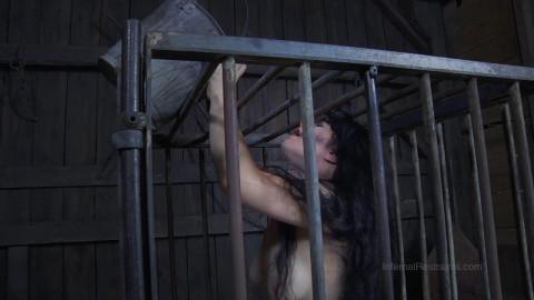 IR - Siouxsie Q - The Farm, Part One - Checkmate