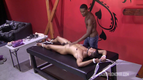 Obedient Doggy Style - Part 2