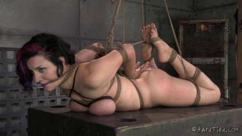 Hardtied - Aug 27, 2014 - A State Of Grace - Iona Grace - Jack Hammer