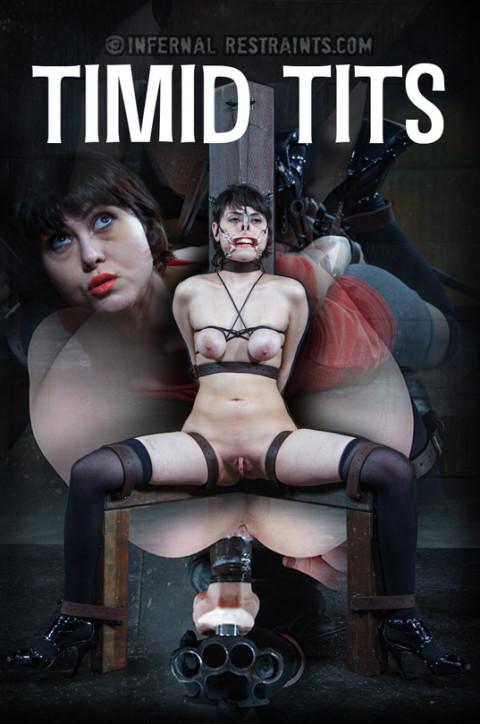 Timid Tits - Audrey Noir