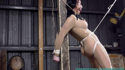 3 Strenuous Positions on the Post for Raven - Part 2