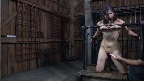 Worthless Cunt Part 3 - BDSM, Humiliation, Torture