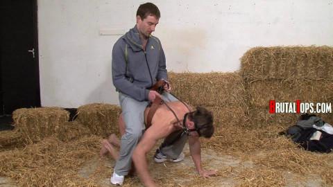 Brutal Pony Training