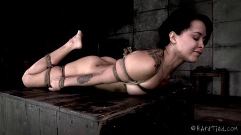 New Amazing Slave
