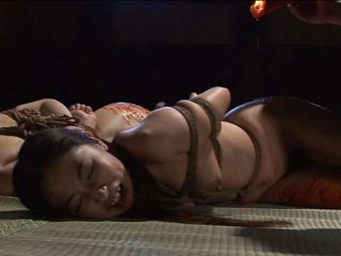 Higyaku no dokyusei