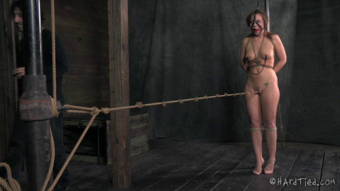 Wet & Desperate Slave - Maddy OReilly
