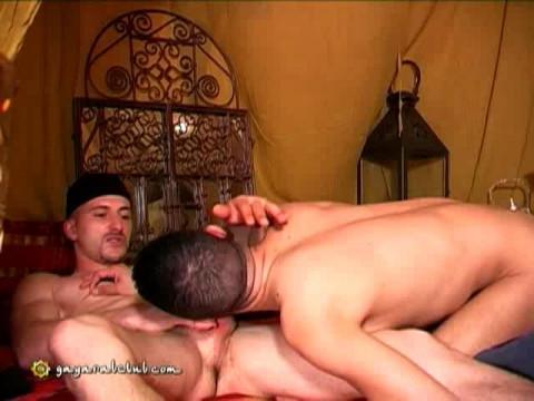 Gay Arab Club  ( Citébeur )