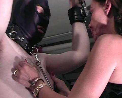 Captivemale femdom videos 40