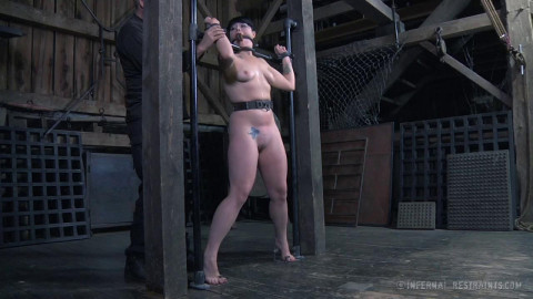 After Languishing In Lengthy Term Restraint bondage