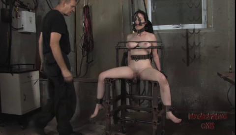 Stocked Slut Pt.2 Sybil