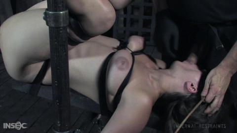 IR - Sister Dee - Bondage Pig, Part Two