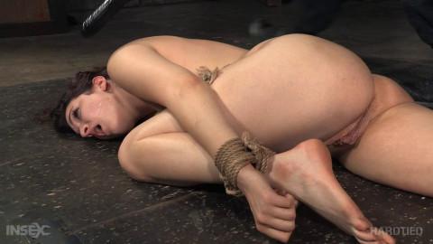 Hardtied - Jan 06, 2016 - Nov 25, 2015 - Bondage Ballerina