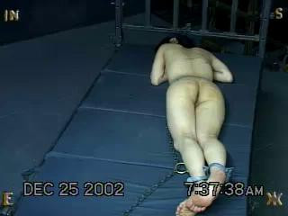 Insex - The First Day of Xmas (Live Feed From December 24-25, 2002)