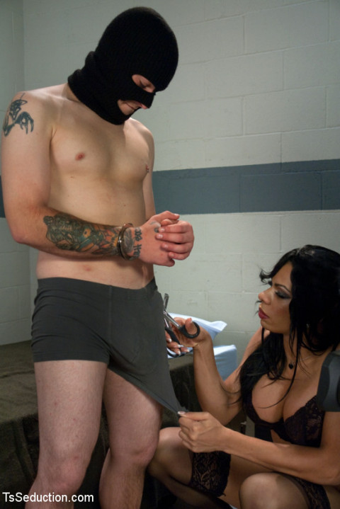 Interrogation: Ts Sasha Strokes and her TEN inches of Law