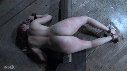 Rough Humiliation & Tortures For Stephie Staar