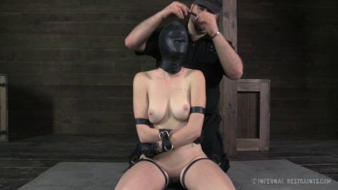 Whipped Bound And Boxed - Ashley Lane