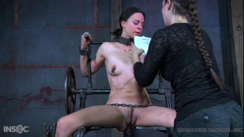 The Obedience of vol. 314 Part 3