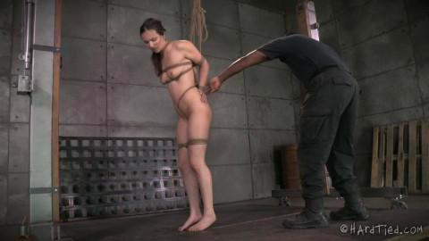 Jack Hammer Keeps Casey Cumming Her Brains Out