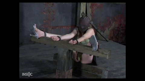 InfernalRestraints - Lotus - Punish-Her