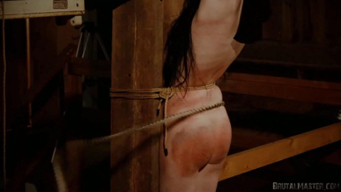 Wednesday - Bullwhipped in the Barn