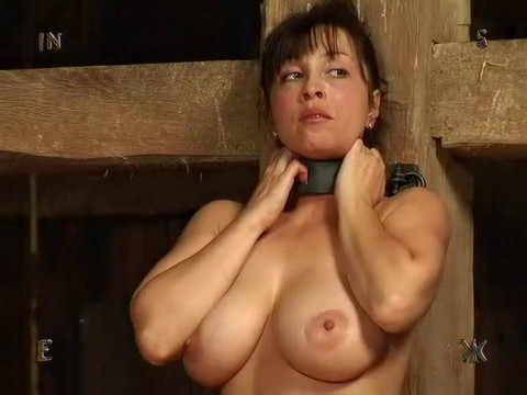 Insex - Model 62 Complete Pack FIFTH vids