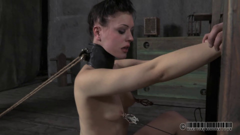 Double Bind Juliette Black Katharine Cane
