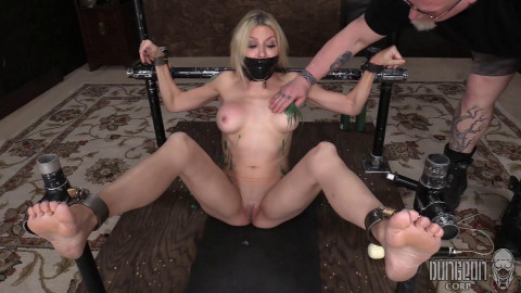 Roped, Shackled, Stocked and Wrapped