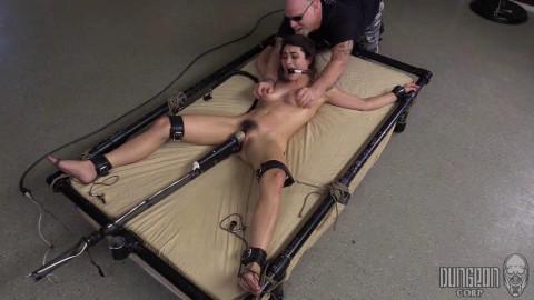 The Training of a Slut part 3