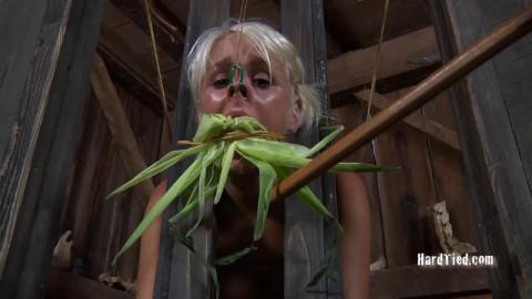 Sophie Ryan - Corn Cob Cunt