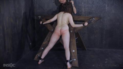 InsexLive 2