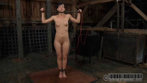 Whiny Bitch 3 - Elise Graves