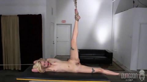 Haley Reed Pristine Submissive (2017)