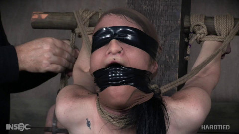 Lydia Black (Neck Tied